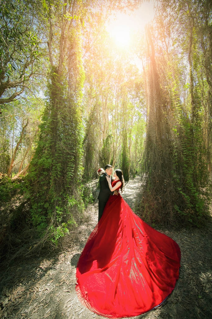 Chụp hình cưới tại rừng nguyên sinh ở Hồ Cốc