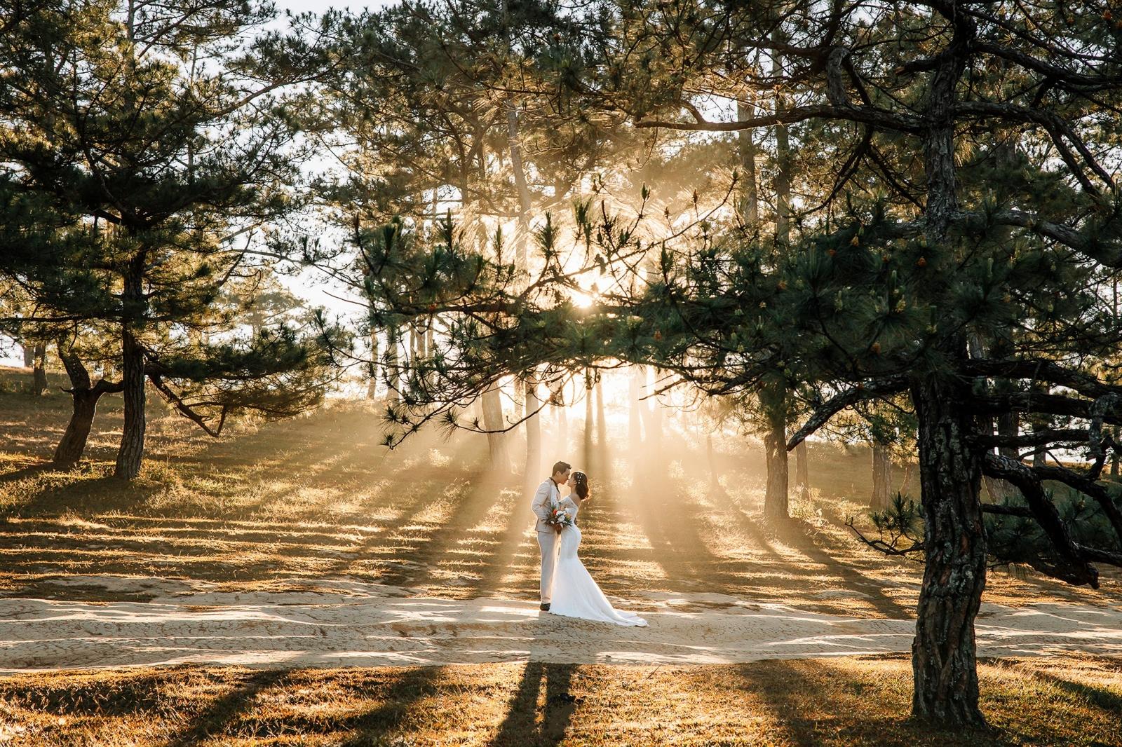 chụp ảnh cưới ngoại cảnh Đà Lạt trọn gói giá rẻ