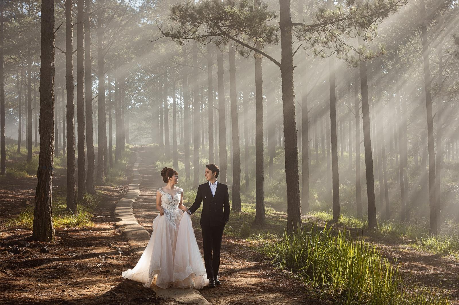 Chụp ảnh cưới tại Rừng thông Đà Lạt