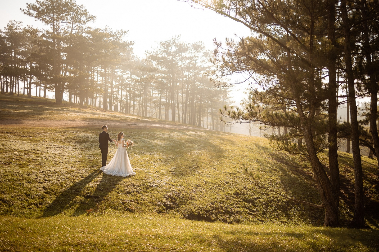 Ảnh cưới đẹp Đà Lạt tại Đồi Thông