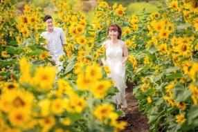 Album cưới giá rẻ Hồ Cốc