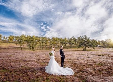 dịch vụ chụp ảnh cưới Đà Lạt đẹp giá rẻ nhất