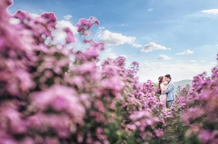 Bộ ảnh cưới đẹp Hồ Cốc của cặp đôi Vĩnh Long