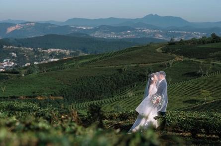 Các địa điểm chụp ảnh cưới đẹp nhất ở Đà Lạt