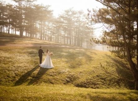 Top 7 địa điểm chụp ảnh cưới trong rừng cho các cặp đôi cô dâu chú rể